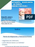 Patrnadaptacin Toleranciaalestresenelcancer 140219145651 Phpapp02