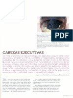 Cabezas Ejecutivas Revista Universitaria (99)2008