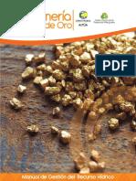 Mineria Oro