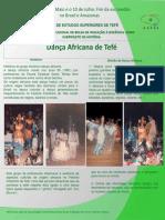 Banner-historia - Africana 2