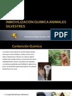 Tecnicas de Aplicación de Farmacos en Animales Silvestres
