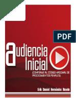 AUDIENCIA INICIAL - ERIK RAUDA.pdf.pdf