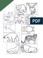 picture animals.docx