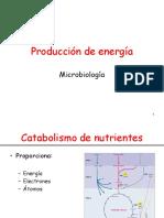 Metabolism o 1 Farmacia