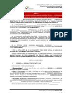 ANEXO 6 RO-contrato de Prestacion de Servicios