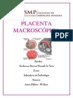 PLACENTA-MACROSCÓPICA-3