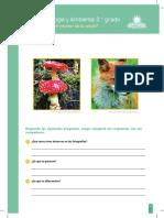 RP-CTA2-K01 -Ficha N° 1.docx.pdf