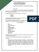 Documento Efectos Del Masaje