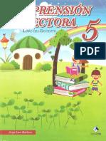 Comp Lect 5 DOCENTE Español Analis de Literatura