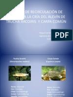 26659340-Sistema-de-RecirculaciOn-de-Agua-Para-La.pptx