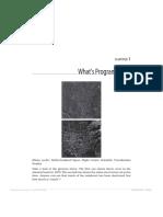 Lectura 2 Introduccion a La Programacion Complementaria