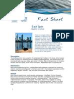 fact sheet - black swan