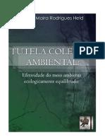 (2015) TUTELA COLETIVA AMBIENTAL Efetividade Do MA Ecologicamente Equilibrado