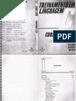 Treinamento em Linguagem - C modulo 1 -Victorine Viviane Mizrahi-.pdf