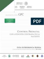 GRR. Control prenatal..pdf