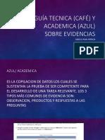 Guía Tecnica y Academica Sobre Evidencias