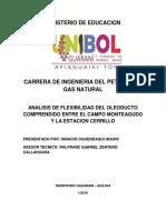 analisis de flexibilidad castellano.docx