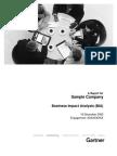 Sample BIA Report
