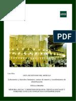 Guia Laboratorio y Derechos Humanos Luis Rios(1)