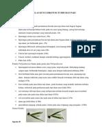 Data Kelas Kunci Dikotom Tumbuhan Paku Offering i