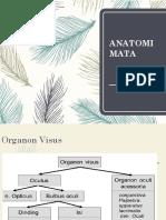 100422_Anatomi_mata[1]