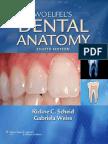 140000868-Woelfels-DENTAL-ANATOMY-8th-Edition-2012.pdf