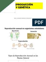 6. Reproducción y Genética