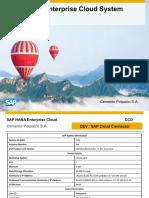 HandoverPPT CPI CCD CloudConnector (1)
