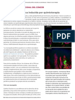 Neuropatía Periférica Inducida Por Quimioterapia - National Cancer Institute