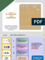 01 Lenguaje y Lingu i Stica p