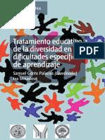 Tratamiento Educativo de La Diversidad en Las Dificultades Espec