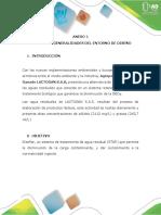 ANEXO 1 (2)