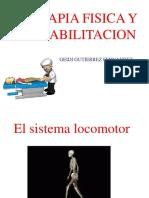 Sistema Locomotor Terapia