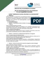 CURSO HIDRAULICA FLUVIAL.pdf