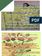 Criterios Diagnósticos Según El Dsm 5