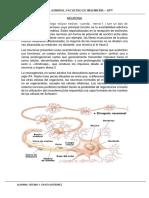 BIOLOGIA TAREA.docx
