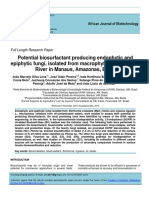 Potential Biosurfactant Producing Endophytic And