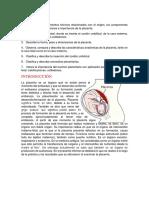 Informe Lab Placenta
