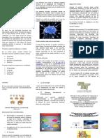 Triptico Materia Desarrollo de Aprendizaje1
