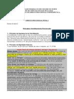 02 Princípios Constitucionais Processuais