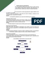 FORMAS BÁSICAS DE ARGUMENTAR.docx