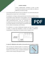 codificadores.docx