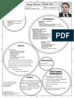 Paweł Bilnicki CV ENG.pdf
