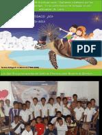 Actividades de conservación en tortugas Marinas