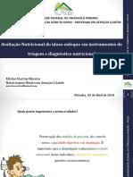 Avaliaçao Subjetiva Global e Do Hospitalizado - Copia