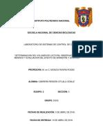 EFECTO ACARREO.docx