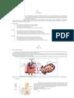 Organ Dan Fungsi Pada Sistem Respirasi Dan Ekskresi Kel. 8 Off b.pdf-1