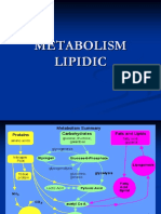 Metabolism Lipidic Md