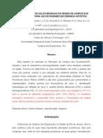Artigo -engobe25agosto2010