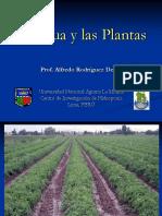 Agua Plantas 2014